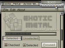 Exotic_Metal