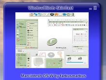 WindowBlinds Skincast
