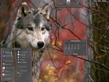 grey wolf Protector..