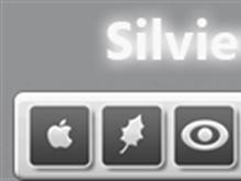 Silvier Dockons