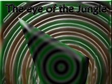 The eye of the Jungle