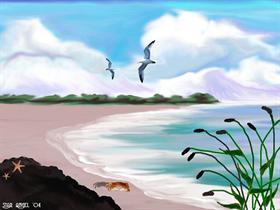 Ocean Scene3