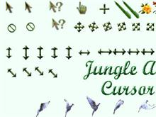 Jungle Reloaded