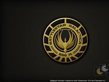 BSG Logo Wall