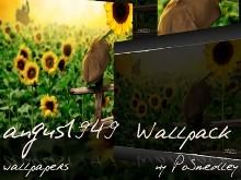 a1949 Wallpack