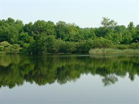 Fishin' Lake
