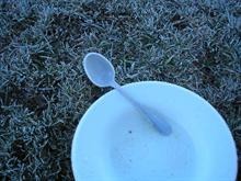 Frozen Bowl n' spoon