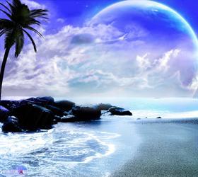 Sea wonderland