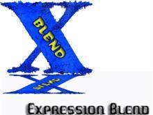 Expression Blend