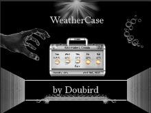 WeatherCase