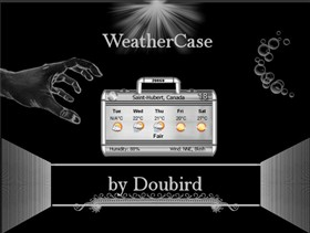 WeatherCase