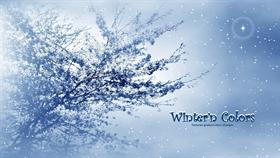 Winter'n Colors #winterdream