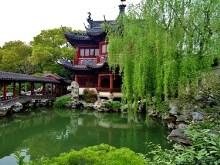 Shanghai Garden Pond