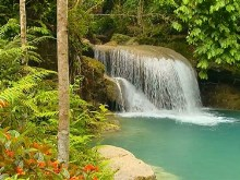 Tropical Falls