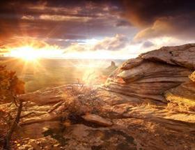Az Desert Sun Flares Logon
