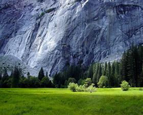 Rockface - Yosemite
