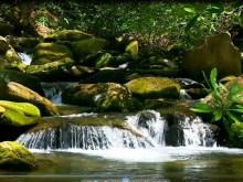 distant stream