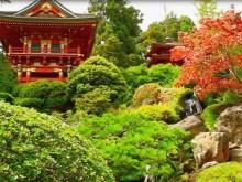 jap water garden