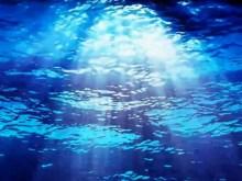 under ocean rays