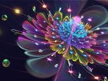 Fleur De Vibrant