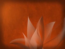 Amber Wallpaper