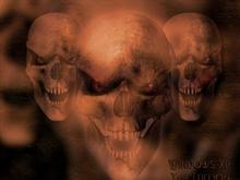 skulls x64