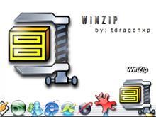 Winzip Metal