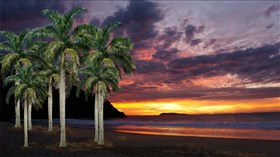 Sunset_Tropical_Haven