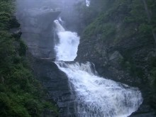 Evergreen_Forest_Waterfalls