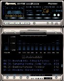 Pioneer Professional 2